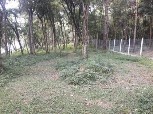 São José dos Pinhais - Chácara c/ 2328m² em condomínio fechado próx. BR 277 - Foto 8