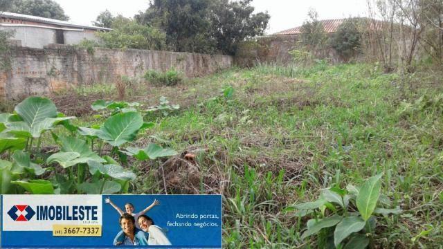 Terreno para alugar em Centro, Pinhais cod:00362.001 - Foto 3