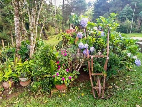 Chácara à venda em Área rural, Mandirituba cod:150401 - Foto 9