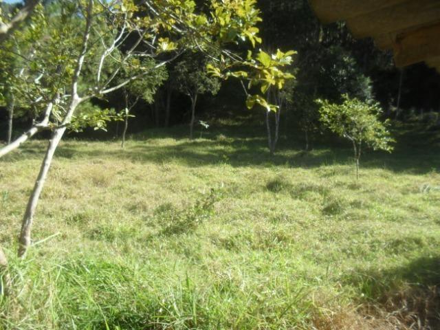 Fazenda com 57 hectares em Carmopolis de Minas - Foto 14