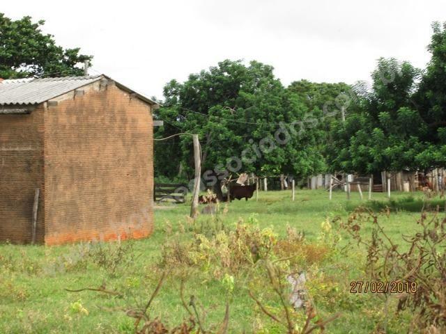 Fazenda com 881 hectares em Corumbá-MS para agricultura e pecuária - Foto 3