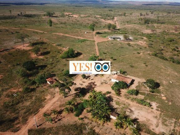 Fazenda para venda, chapada, andaraí, 2.530,00 hectares. - Foto 2