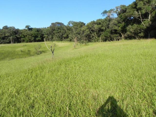 GE Compre agora seu terreno 1000m2 em mariporã para o final do ano - Foto 2