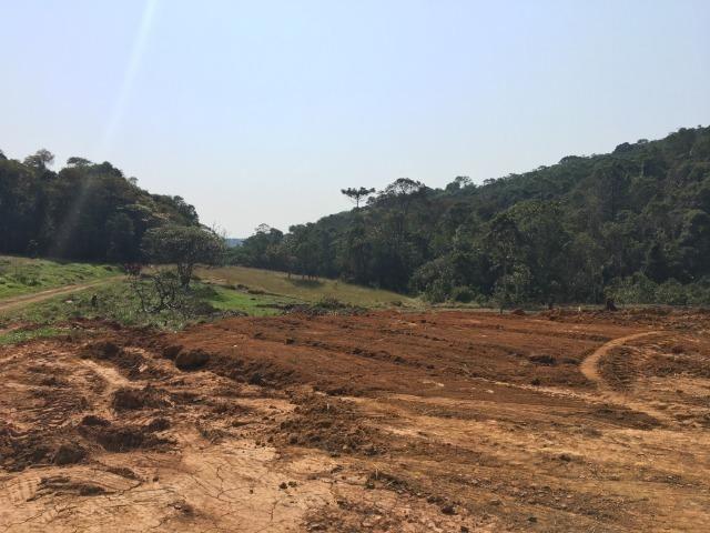 GE Compre agora seu terreno 500m2 em mariporã para o final do ano 10.000