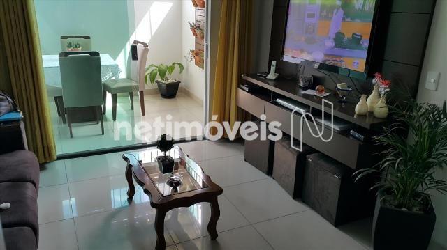 Apartamento à venda com 3 dormitórios em Santo andré, Belo horizonte cod:725176 - Foto 2