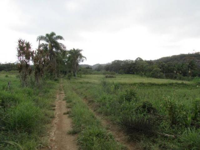 CHÁCARA PARA LOCAÇÃO NO COLONIA COM 15000M², DE FUNDO PARA A REPRESA BILLINGS - Foto 4