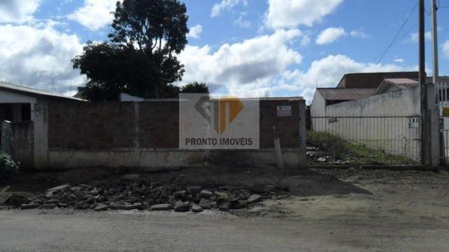 Terreno para Venda em São José dos Pinhais, JD. SUÍÇA, 1 dormitório - Foto 3