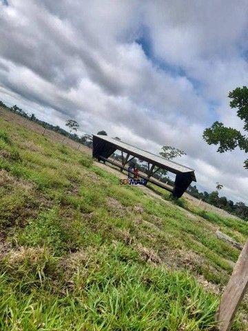 Sítio à venda por R$ 1.680.000 - Área Rural de Porto Velho - Porto Velho/RO - Foto 16