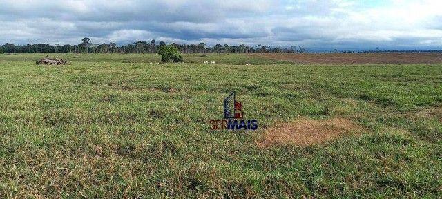 Fazenda à venda, 300 alqueires 250 aberto por R$ 15.000.000 - Zona Rural - São Francisco d - Foto 3