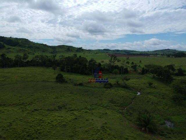 Fazenda à venda, por R$ 19.950.000 - Santa Felicidade - Alta Floresta D'Oeste/RO - Foto 3