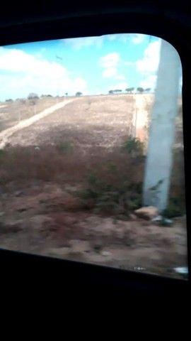 Terreno em bezerros  - Foto 6