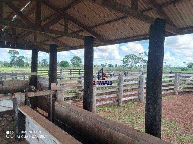Fazenda à venda, por R$ 8.370.000 - Zona Rural - São Francisco do Guaporé/RO - Foto 8