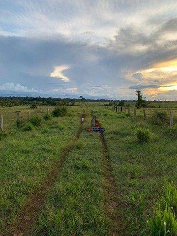 Fazenda à venda, por R$ 10.925.000 - Área Rural de Porto Velho - Porto Velho/RO - Foto 3