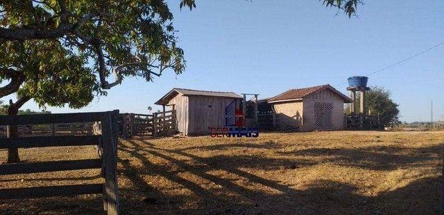 Sítio com 1 dormitório à venda, por R$ 3.150.000 - Zona Rural - Presidente Médici/RO - Foto 12