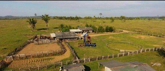 Sítio à venda por R$ 1.680.000 - Área Rural de Porto Velho - Porto Velho/RO - Foto 20