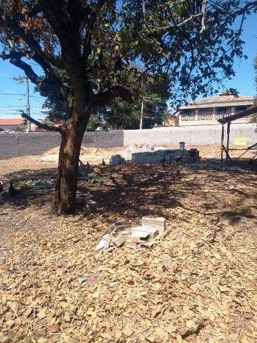 BELO HORIZONTE - Loteamento/Condomínio - Trevo - Foto 5