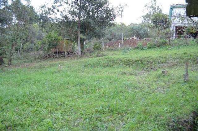 Sítio rural à venda, vale dos pinheiros, gramado. - Foto 7