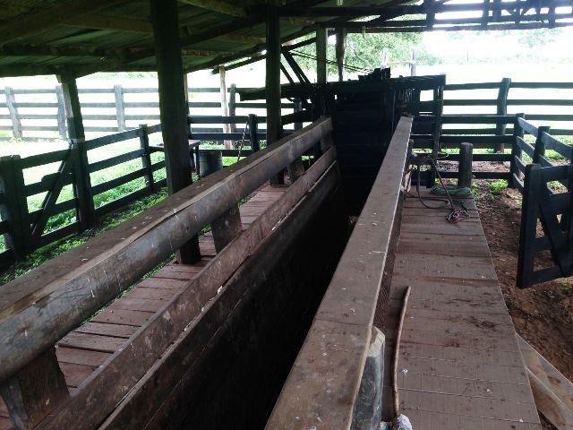 Fazenda 950 ha Rosário Oeste MT - Foto 3