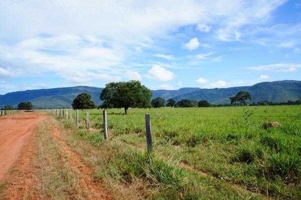 Fazenda 1750 ha N.S. Livramento MT - Foto 7