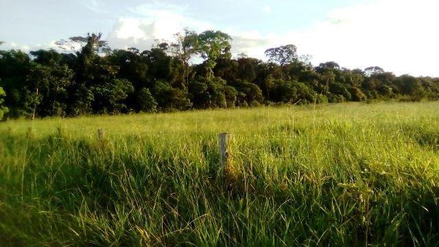 Fazenda 7900 ha Alta Floresta MT - Foto 10