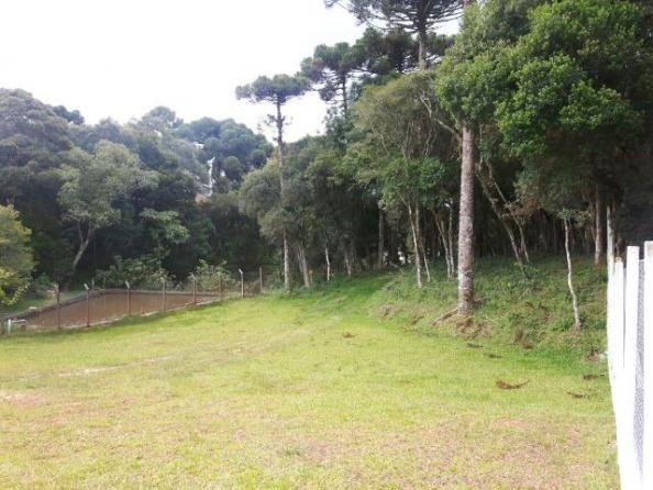 São José dos Pinhais - Chácara c/ 2328m² em condomínio fechado próx. BR 277 - Foto 2