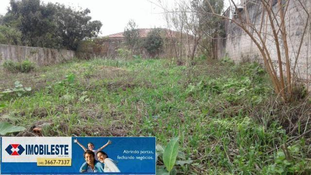 Terreno para alugar em Centro, Pinhais cod:00362.001 - Foto 4