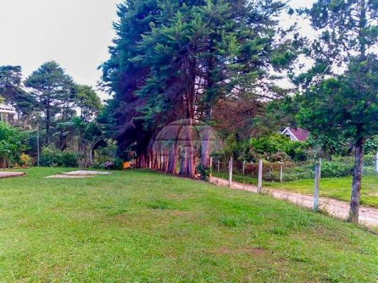 Chácara à venda em Área rural, Mandirituba cod:150401 - Foto 7