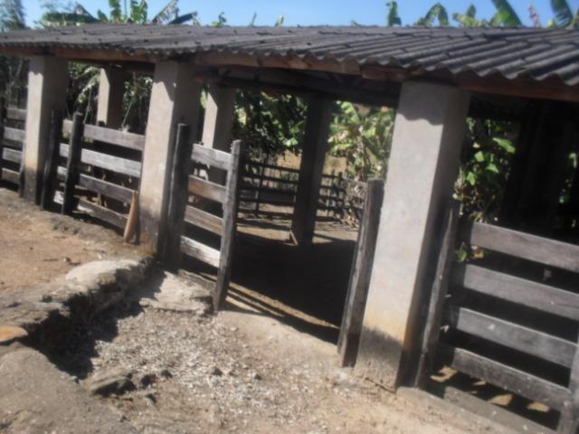 Fazenda com 57 hectares em Carmopolis de Minas - Foto 18