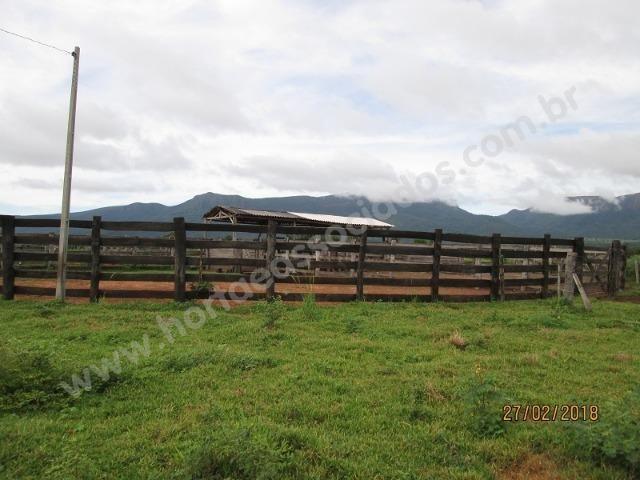 Fazenda com 881 hectares em Corumbá-MS para agricultura e pecuária