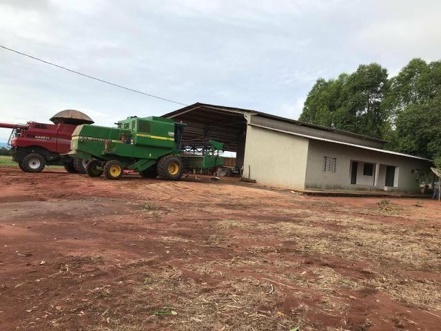 Fazenda para Arrendamento - MS - Foto 8
