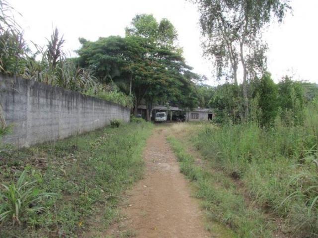 CHÁCARA PARA LOCAÇÃO NO COLONIA COM 15000M², DE FUNDO PARA A REPRESA BILLINGS - Foto 9
