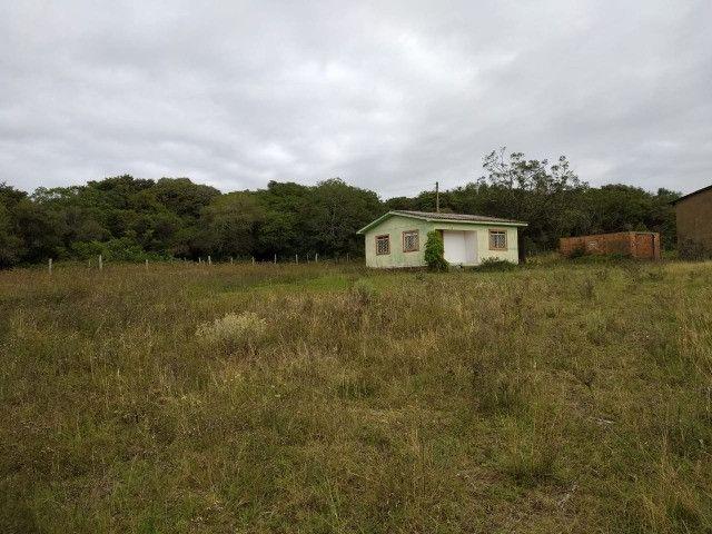 Velleda oferece sitio de 2 ha escriturado com casa e galpão, 1 km da RS040 - Foto 2