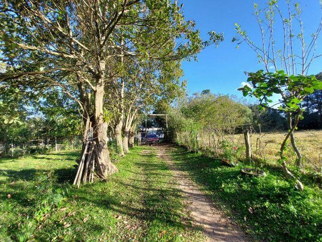 Velleda oferece belíssimo sítio 1 hectare todo arborizado, ideal para lazer - Foto 13