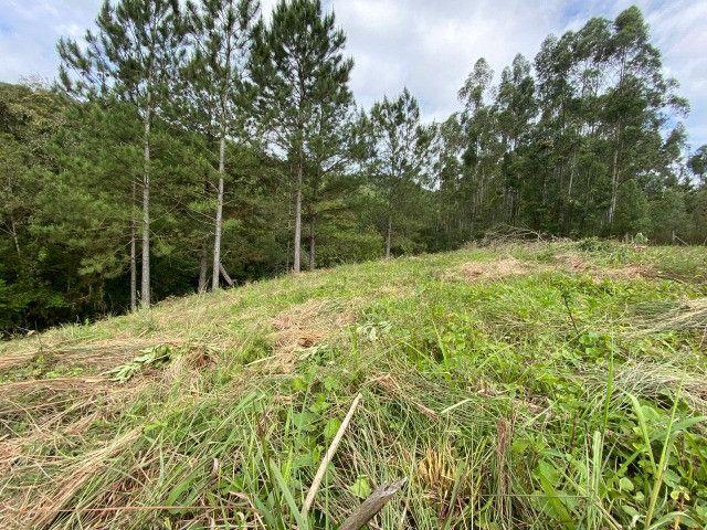Sitio de 1 hectare em Padilha, barbada do dia - Foto 6