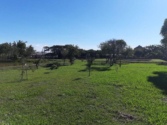 Velleda oferece lindo sítio de meio hectare para lazer e moradia, com açude - Foto 4