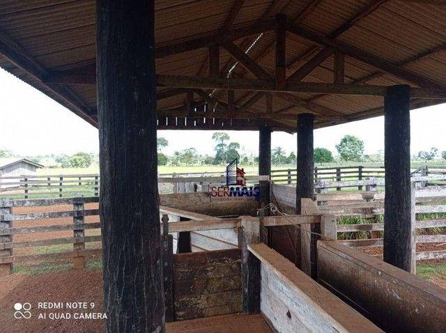 Fazenda à venda, por R$ 8.370.000 - Zona Rural - São Francisco do Guaporé/RO - Foto 15