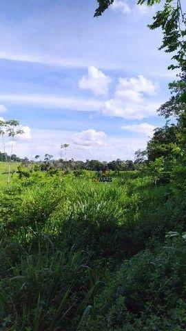 Sítio à venda, 508200 m² por R$ 670.000 - Zona Rural - Vale do Anari/RO - Foto 3