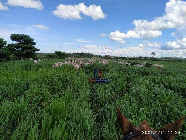 Fazenda à venda, por R$ 14.040.000 - Zona Rural - São Francisco do Guaporé/RO - Foto 3