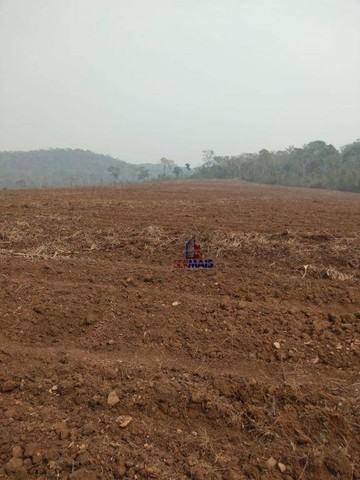 Fazenda à venda por R$ 9.234.000,00 - Zona Rural - Alta Floresta D'Oeste/RO - Foto 2