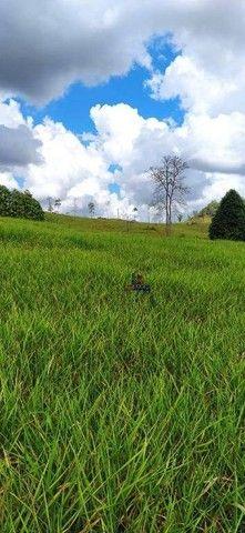 Sítio à venda, 508200 m² por R$ 670.000 - Zona Rural - Vale do Anari/RO - Foto 13