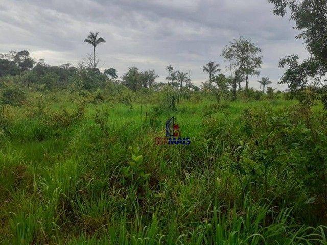 Sítio à venda, por R$ 400.000 - Área Rural de Porto Velho - Porto Velho/RO - Foto 4