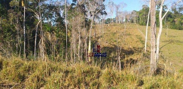 Sítio com 1 dormitório à venda, por R$ 3.150.000 - Zona Rural - Presidente Médici/RO - Foto 3