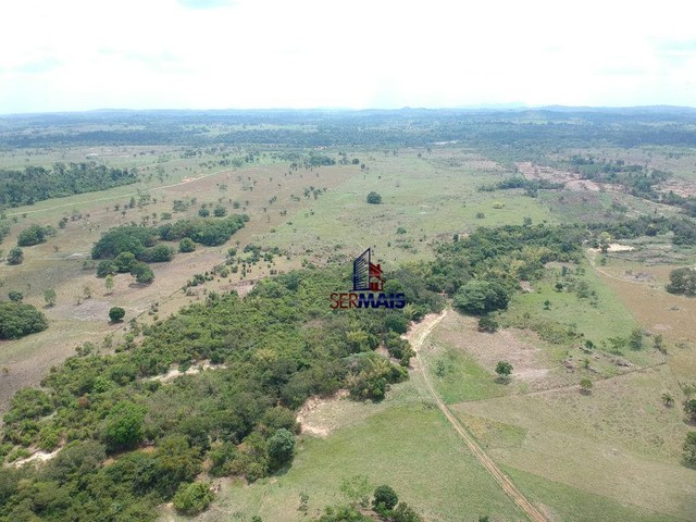 Sítio à venda com 32 alqueires por R$ 2.000.000 - Zona Rural - Presidente Médici/RO - Foto 14