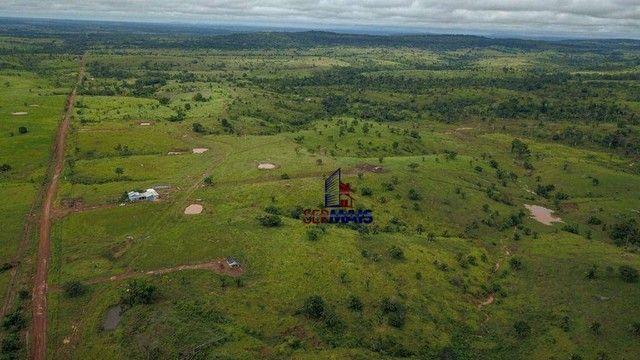 Fazenda com à venda, por R$ 14.000.000 - Centro - Alta Floresta D'Oeste/RO - Foto 8