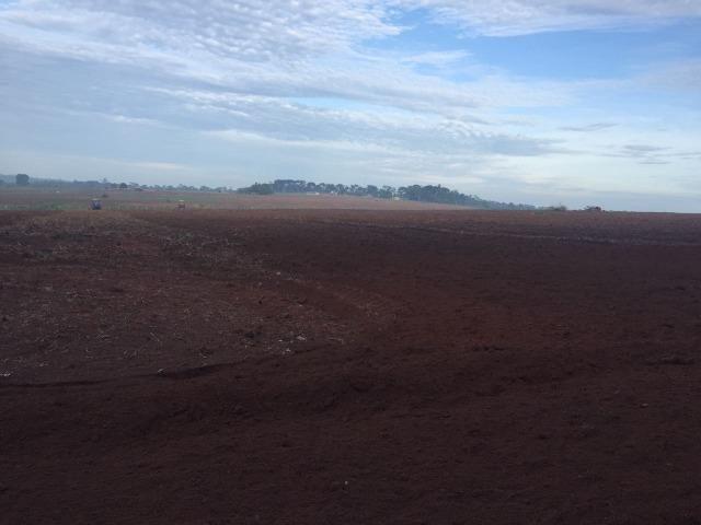 Fazenda 15000 ha 150 Km Sorriso MT - Foto 7