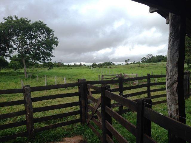 Fazenda 950 ha Rosário Oeste MT - Foto 2