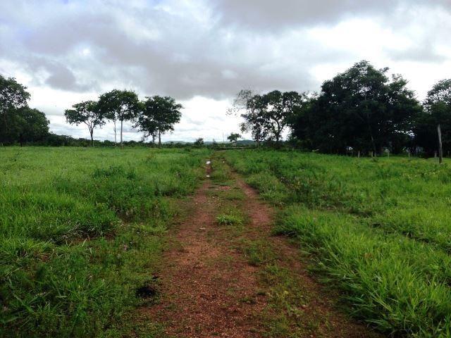 Fazenda 950 ha Rosário Oeste MT - Foto 13