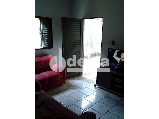 Casa para alugar com 3 dormitórios em Segismundo pereira, Uberlândia cod:545080 - Foto 3