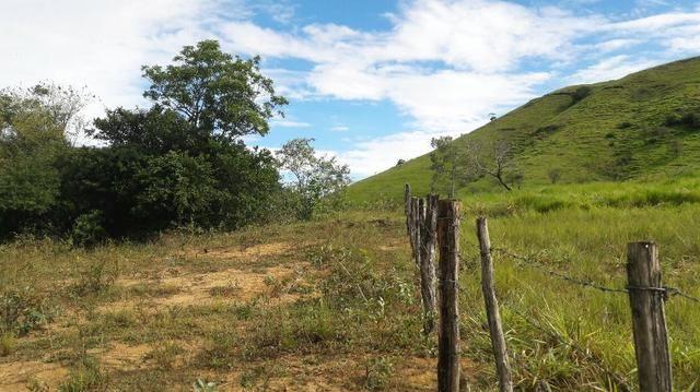 Saquarema - Terreno Madressilva - Rio Seco - 10.139m2 Próximo Km 64 Amaral Peixoto - Foto 3