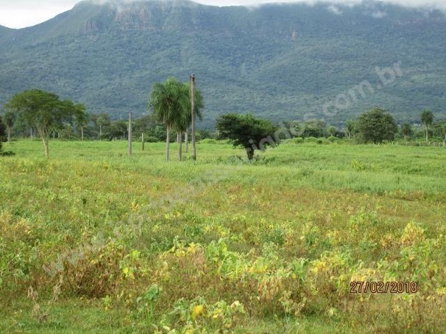 Fazenda com 881 hectares em Corumbá-MS para agricultura e pecuária - Foto 5